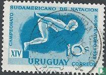 14. Südamerikanisch Schwimmmeisterschaft