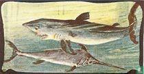 Haai en Zwaardvisch.