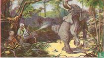 Olifantenjacht in Indië.