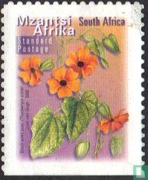 Flora en Fauna (Mzantsi)