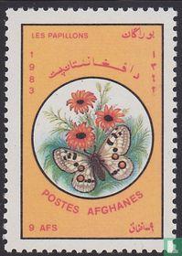 Afghanistan 1983