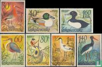 Water Birds for sale
