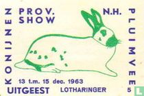 konijn: Lotharinger