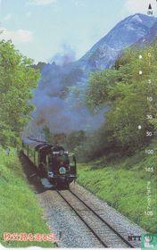 Steam Train C58363 on Chichibu Journey