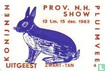 konijn: Zwart-Tan