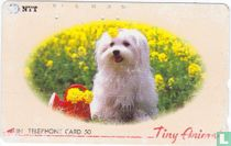 """Tiny Animal"" - Puppy and Flowers"