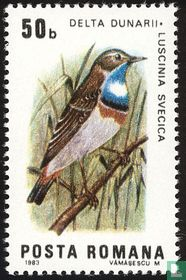 Vogels van de Donaudelta