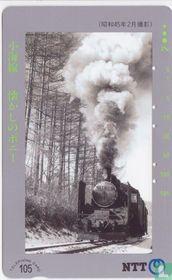 Steam Locomotive C56149 - Koumi Line