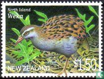 Endangered birds for sale