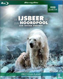 De ijsbeer en zijn Noordpool