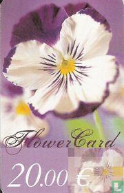 Euro Florist