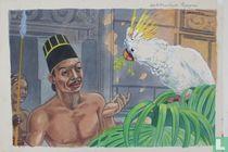 De miskende papagaai