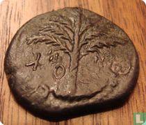 Judea AE munt van Sjimon Bar Kochba Tweede Joodse Opstand 134-135 n.Chr.