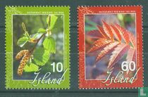 100 jaar bosbouw in IJsland