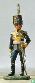 Officer, King Joseph's Army, 1811-13