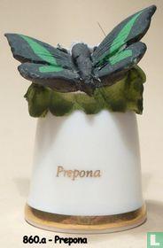 Vlinder - Prepona