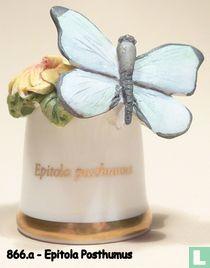 Vlinder - Epitola Posthumus