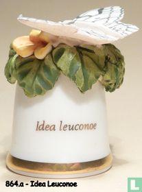 Vlinder - Idea Leuconoe