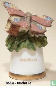 Vlinder - Inachis Io