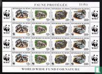 WWF - Pythons