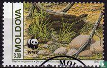 WWF - Slangen