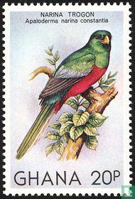 Inheemse vogels