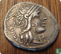 Romeinse Republiek, AR Denarius, 117-116 BC, M. Calidius, Q. Metellus en Cn. Fulvius, Rome