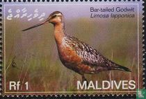 Maldiven 2007 kopen