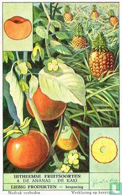 De ananas - De kaki