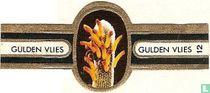 Geelachtige Cleistocactus