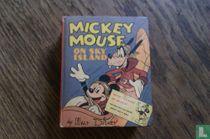 Mickey Mouse on sky island