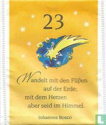 23 Stern von Betlehem