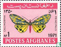 Afghanistan 1971