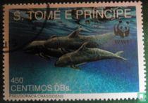 WWF-les mammifères marins