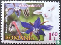 Bloemen en dieren