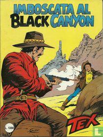 Imboscata al Black Canyon