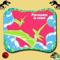 Ptéranodon le volant