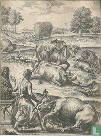 De offerande met exotische dieren