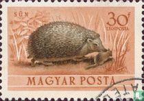 Hongaarse dierenwereld