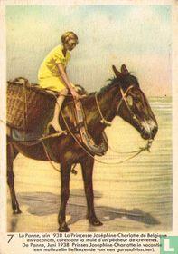 De Panne, Juni 1938. Prinses Josephine-Charlotte in vacantie (een muilezel liefkozende van een garnaalvisser)