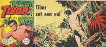 Tibor zet een val