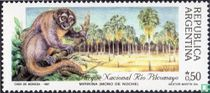 Native monkeys