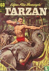 Tarzan 15