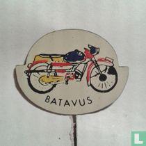 Batavus [achtergrond wit]