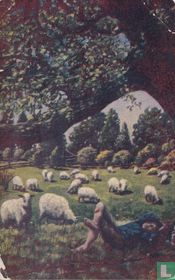 USA - Sheep herder boy with lambs and sheep Stamped 1910