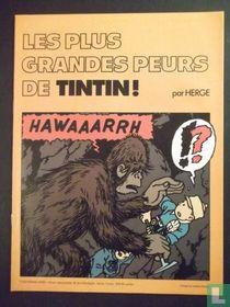 Les plus grandes peurs de Tintin