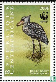 WWF - Schoenbekooievaar