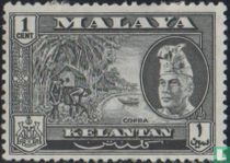 Sultan Ibrahim met landsmotieven
