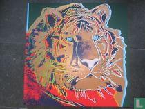 Endangered species, Lion