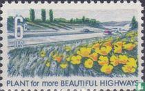 Beautification- Highways